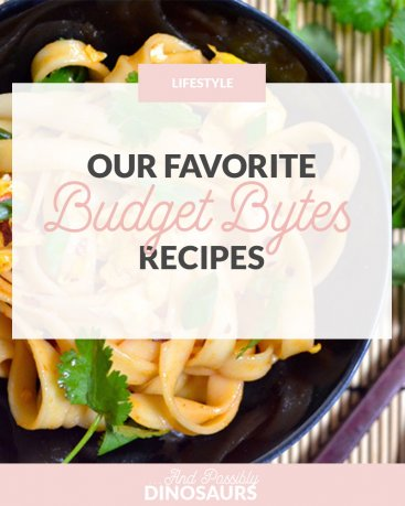Our Favorite Budget Bytes Recipes