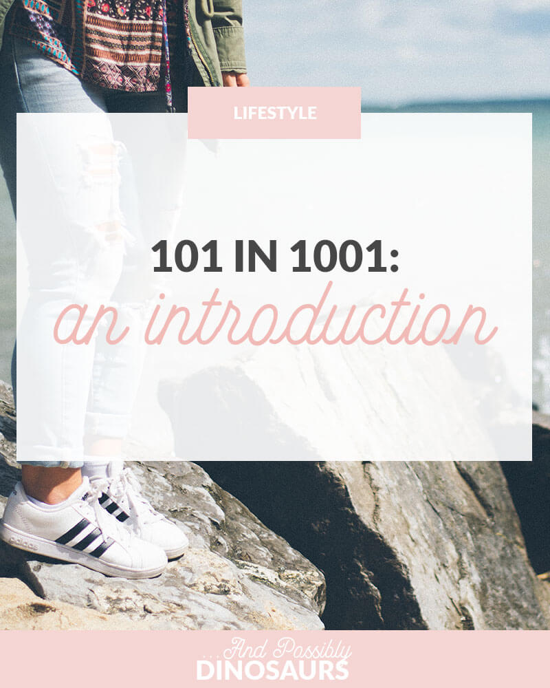 101 in 1001: An Introduction