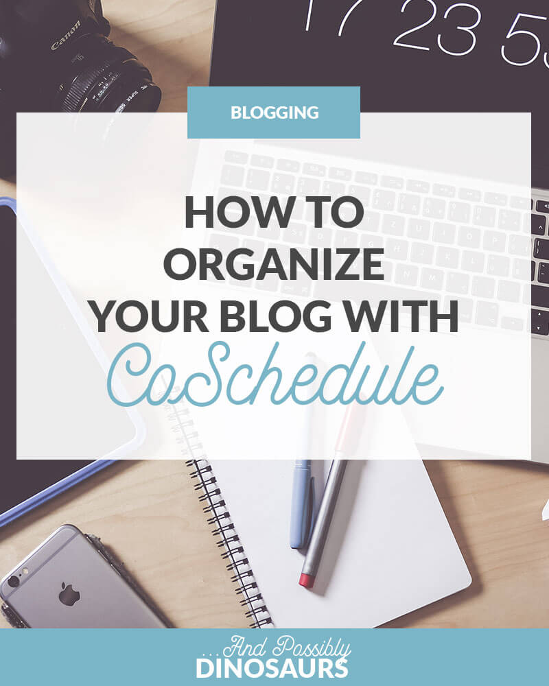 Blogging can be super stressful, with so many things to keep track of. But good news! There is a way! Click thorugh to learn how to organize your blog (we're talkin' hella organized) and save yourself a ton of time!