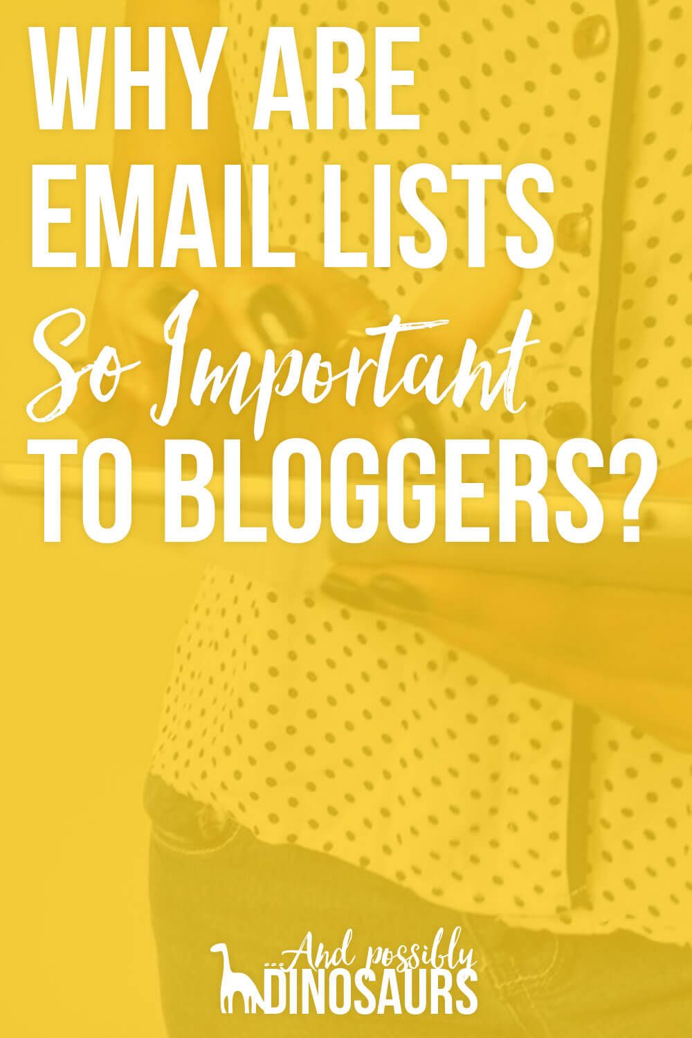You've heard bloggers should have an email list. But why are they so important? (And what the heck are they?!) Click through for my post where I explain what email lists are and why the heck they're so important to bloggers!