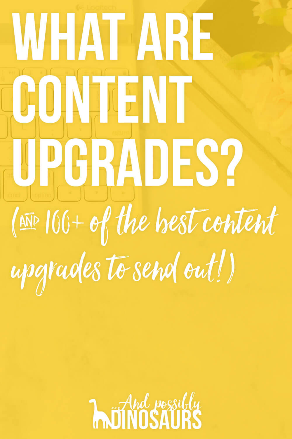 Trying to grow your email list as a blogger? You should try content upgrades! But what are content upgrades, you ask? Click through to find out, PLUS get a list of 100+ content upgrades to send to your email list!