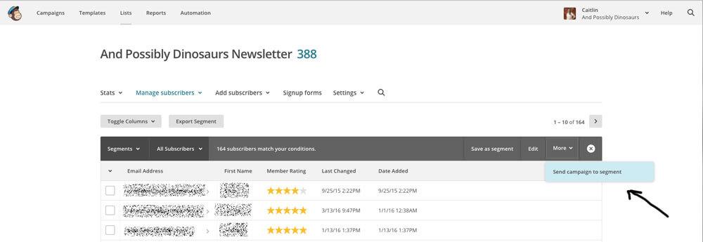 send-campaign-to-segment-screenshot